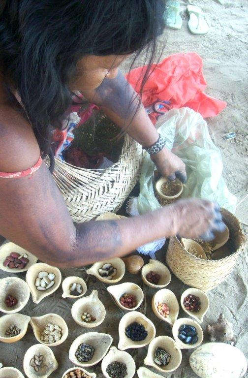 Gessira feira  cabaça sementes