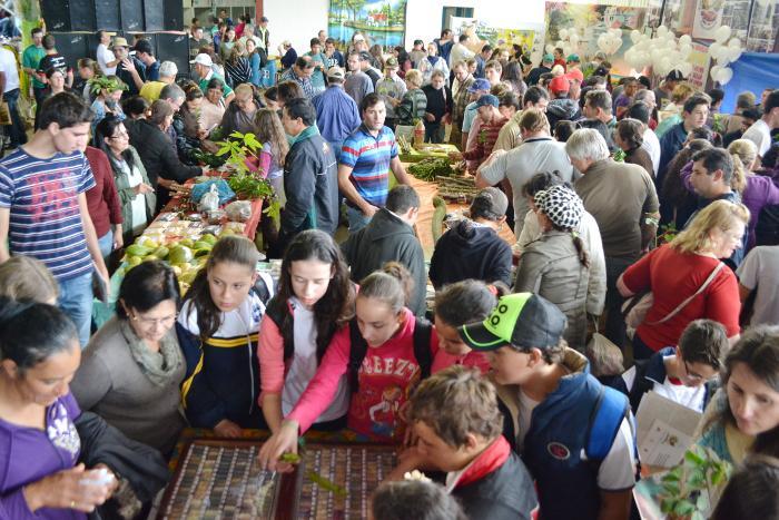 feira de sementes 2