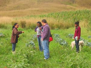 Visita as experiências agroecológicas exercitaram a análise econômica dos agroecossistemas