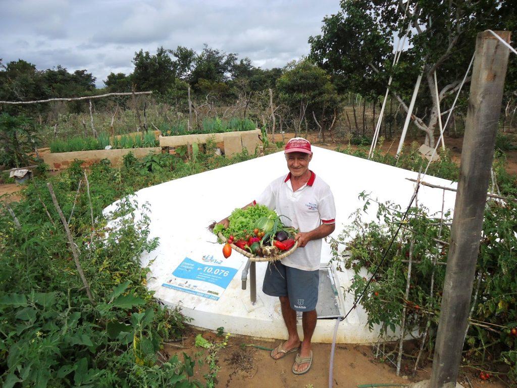 Programa Cisternas está entre as Políticas Públicas que ajudaram a tirar o Brasil do Mapa da Fome | Foto: arquivo ASACom