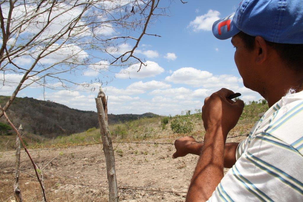 Elias admira a terra que trabalha por anos como meeiro